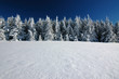 Winterlandschaft 38