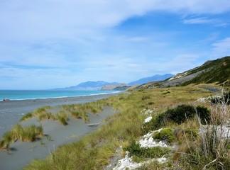 Ostküste -  Am Pazifik II