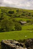Welsh Hillside View poster