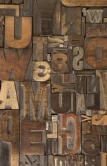 Woodtype 6