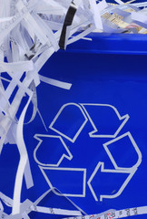 shredded paper in recycle bin