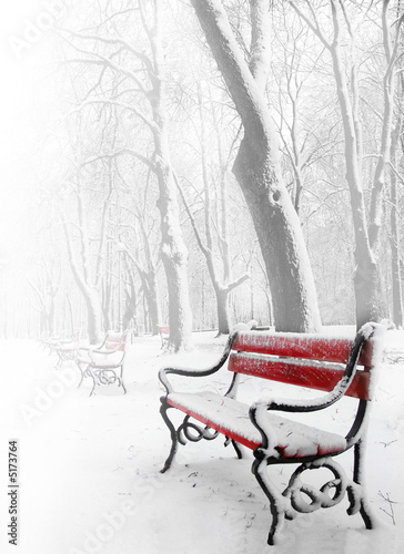 Fototapety, obrazy : Red benches in the fog in winter