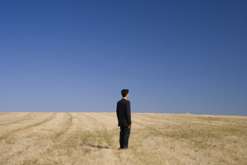 businessman standing in the field