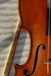 Geige mit Bogen