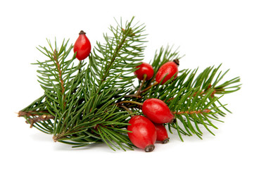 Red-green christmas arragement