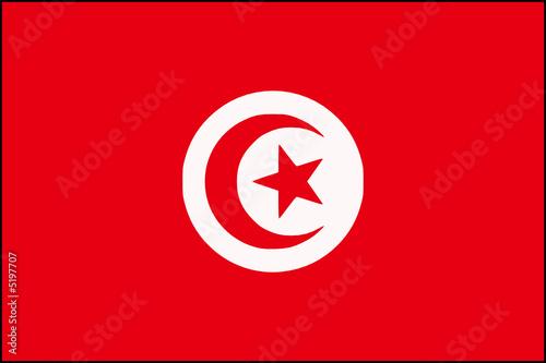 drapeau de la tunisie de lo239c francois fichier vectoriel