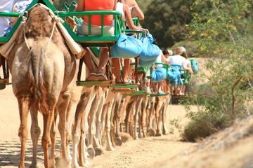caravana de turistas