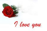 i love you card poster