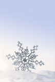 Sparkling snowflake in the snow poster