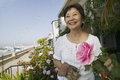 Woman pruning roses, outdoors