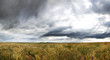 Dramatic Prairie Landscape