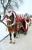 Trip in the sleighs along the streets of city Suzdal