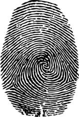 fingerprint-vector