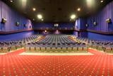 empty cinema auditorium poster