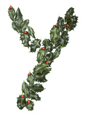 Holly With Berry Letter Y