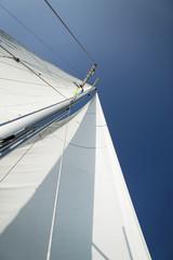 Sailboat mast and sail, low angle view