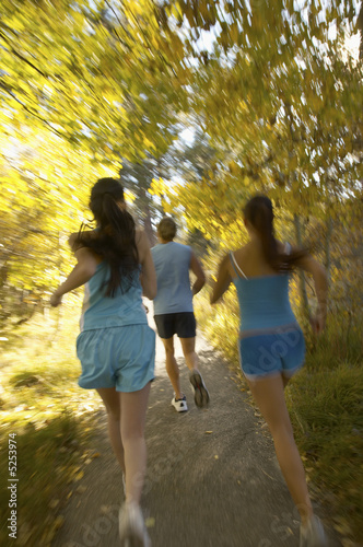 Joggers on Wooded Path