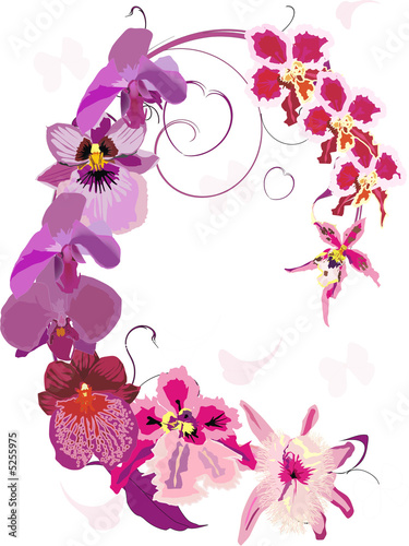 pink orchid ornament