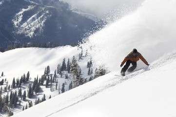 Snowboarder Enjoying Fresh Powder Snow