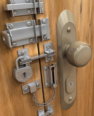 Security Concept. Many lock in only one door