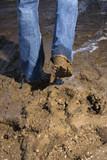 Legs walking through mud. poster