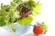 Sunlit Salad
