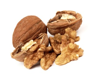 pieces of walnuts on white background