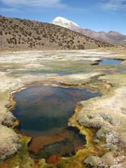 Geyser a pied d'un volcan. Bolivie.