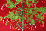 Simple Christmas tree with rich red background poster