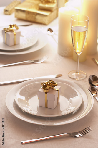 Place  Setting at Christmas