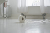 Toilet paper roll on bathroom floor