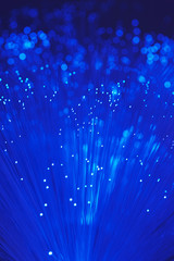 Fiber Optic Light Wand