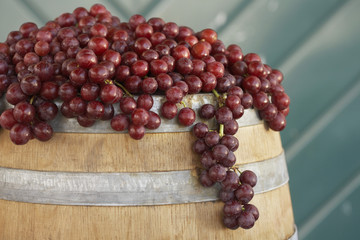 Red grapes arranged on wine cask