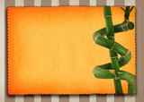 lucky bamboo background poster