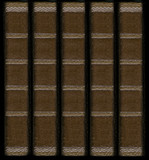 Old vintage leather book spines with silver decorative details poster