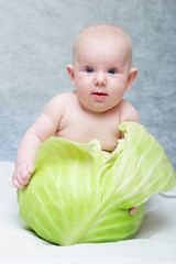 baby born from cabbage