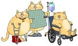 Sick Cats poster