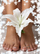 wet feet and madonna lily with snowflakes
