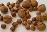 hazelnuts. walnuts. nuts. poster