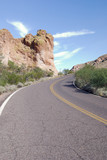 Road at the Apache Trails in Arizona poster