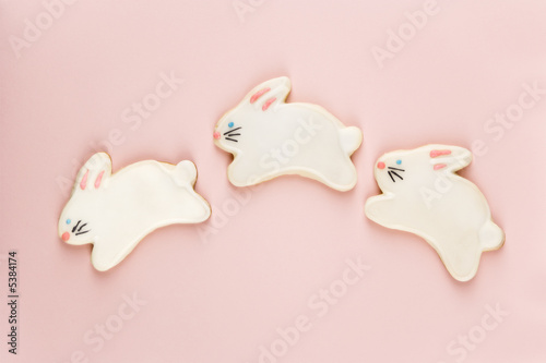 Bunny sugar cookies.