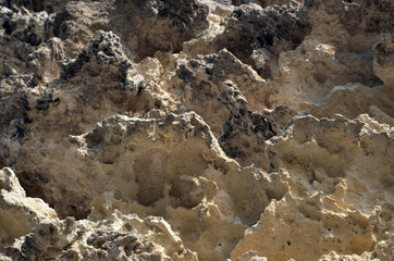closeup of weathered limestone cliff. selective focus.