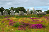 Prehistoric megalithic monuments menhirs in Carnac, France poster