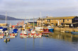lyme regis dorset england uk the harbour