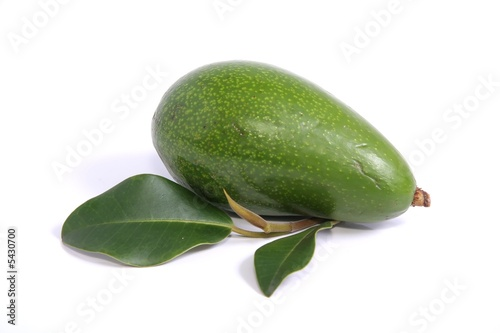 Whole Avocado Pear on white background
