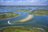 Coastal wetland marsh. poster