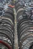 A lot of bicycles at the station in the Hague (the netherlands) poster