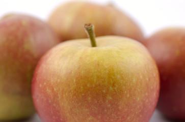 Cox's Apples 5