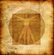 Stylized illustration of Laonardo Da vinci's Vitruvian Man