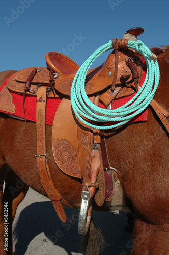 Western Ranch Saddle and Roope On Sorrel Horse